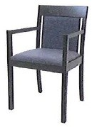 Rainier Arm Chair